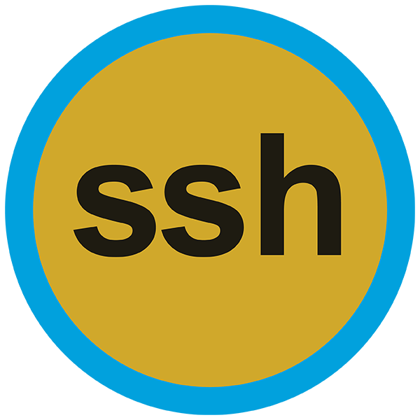 SSH Connector - Mule 3 icon