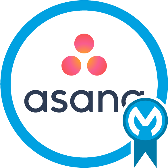 Asana Connector - Mule 3 icon