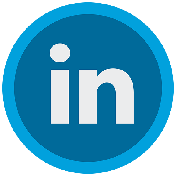 LinkedIn Connector - Mule 3 icon
